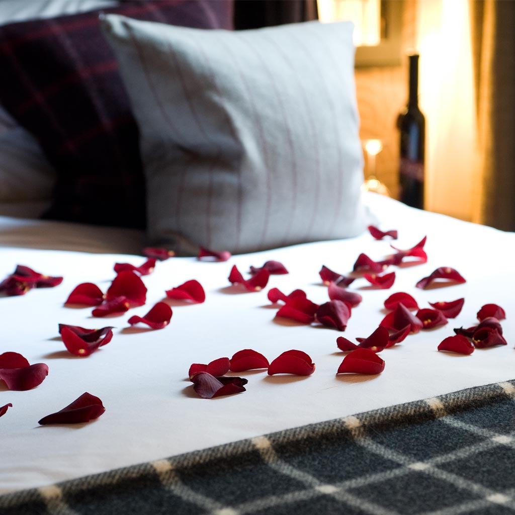 Malmaison hotels offers bed